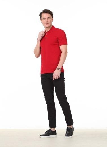Kip Tişört Kırmızı